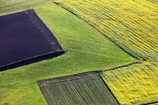 Aerial view of fields in autumn - Klaus Leidorf Aerial Photography
