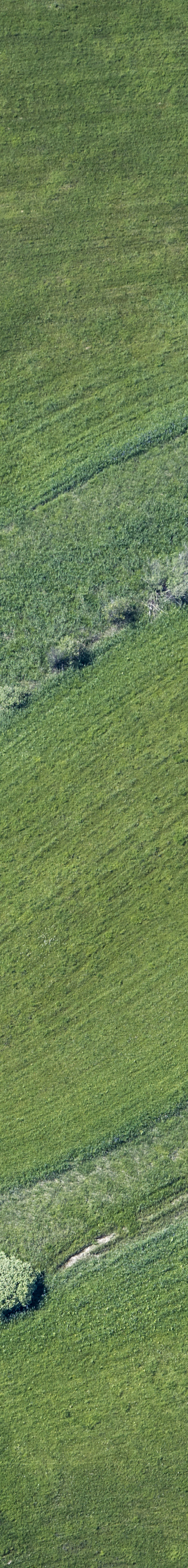 Aerial view of the Pulvermoos nature reserve - Klaus Leidorf Aerial Photography