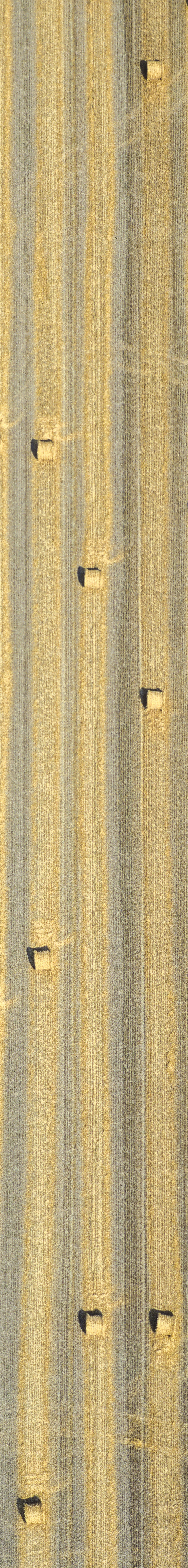Aerial view of bales of straw on a harvested grain field - Klaus Leidorf Aerial Photography