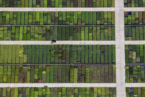 Aerial view of the flower beds of a nursery on Kronacher Strasse in Bamberg - Klaus Leidorf Aerial Photography
