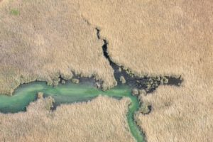Aerial view of the Fischbach in the nature reserve Herrschinger Moos - Klaus Leidorf Aerial Photography
