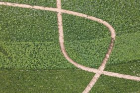 Aerial view of field tracks - Klaus Leidorf Aerial Photography