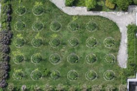 Aerial view of tree rows in the city of Munich - Klaus Leidorf Aerial Photography