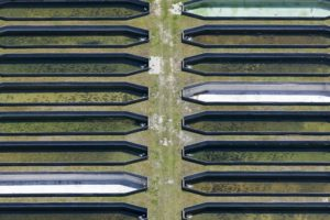Aerial view of fish ponds at the Bavarian State Office for Water Research in Wielenbach - Klaus Leidorf Aerial Photography
