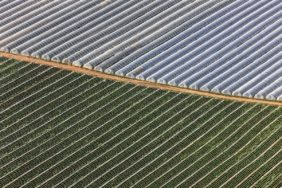 Aerial view of foil greenhouses above a vegetable field in the Cologne-Bonn Bay - Klaus Leidorf Aerial Photography