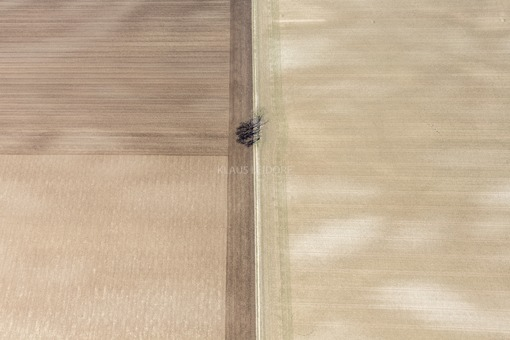 Aerial view of the remains of the original vegetation in modern farmland - Klaus Leidorf Aerial Photography
