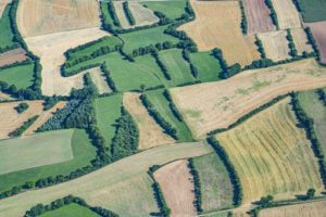 Aerial view of the hedgerow landscape near Marktrodach in Upper Franconia - Klaus Leidorf Aerial Photography