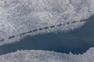 Aerial view of three swans on the ice of a re-frozen quarry pond - Klaus Leidorf Aerial Photography