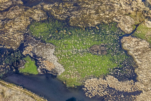 Aerial view of a wetland at Schambach near Treuchtlingen - Klaus Leidorf Aerial Photography