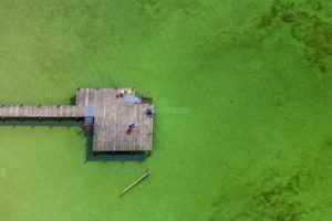 Aerial view of a jetty in the Starnberger See, where some people are resting in the warm March sun - Klaus Leidorf Aerial Photography