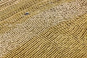 Aerial view of a tractor sweeping the straw after the grain harvest - Klaus Leidorf Aerial Photography