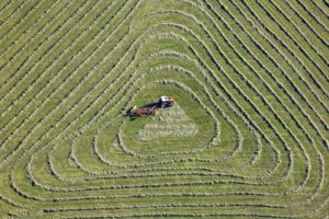 Aerial view of a tractor just turning the hay - Klaus Leidorf Aerial Photography