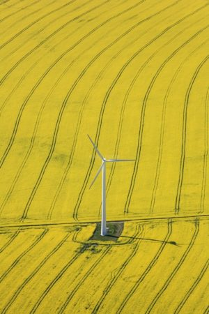 Aerial photograph of a wind turbine in a flowering rape field - Klaus Leidorf Aerial Photography