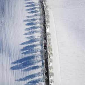 Aerial view of an avenue country road with red car in winter - Klaus Leidorf Aerial Photography