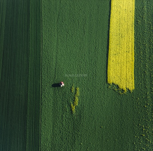 Aerial view of a small field chapel with red roof next to a suddenly ending yellow rape seed strip on a dark green field - Klaus Leidorf Aerial Photography