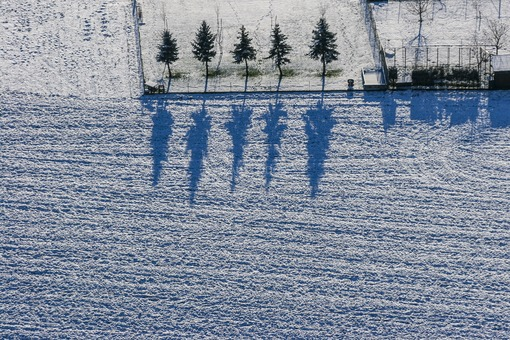 Aerial view of five shade-casting spruces in winter - Klaus Leidorf Aerial Photography