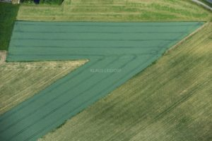 Aerial view of a pointed wheat field - Klaus Leidorf Aerial Photography