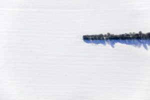 Aerial view of the end of a hedge in the winter landscape - Klaus Leidorf Aerial Photography