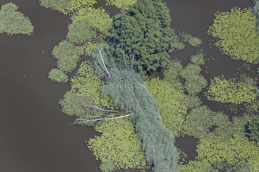 Aerial view of the Mühlweiher in the Dennenlohe castle park - Klaus Leidorf Aerial Photography
