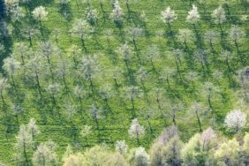Aerial photograph of the experimental and teaching garden in Kumhausen-Siegerstetten in spring - Klaus Leidorf Aerial Photography