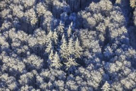 Aerial view of the Winter Magic Forest - Klaus Leidorf Aerial Photography