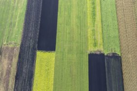 Aerial view of arable strips in Donaumoos - Klaus Leidorf Aerial Photography