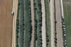 Aerial view of field terraces near Marktoffingen - Klaus Leidorf Aerial Photography