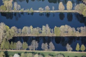 Aerial view of rows of trees at the gravel pond - Klaus Leidorf Aerial Photography
