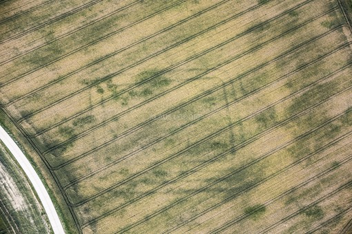 Aerial photograph of vegetation features of the enclosing ditches of a late Hallstatt period manor - Klaus Leidorf Aerial Photography