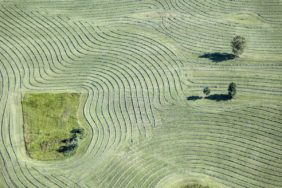 Aerial view of tedder tracks near Uffing - Klaus Leidorf Aerial Photography