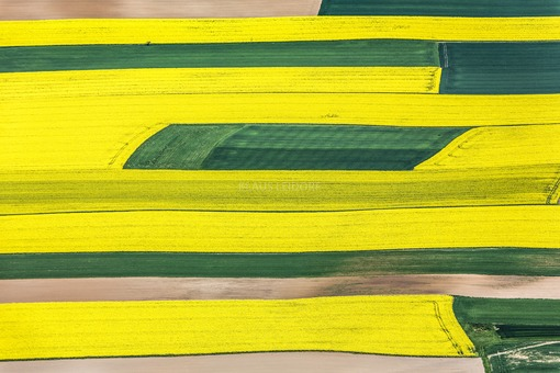 Aerial photograph of rape field strips - Klaus Leidorf Aerial Photography