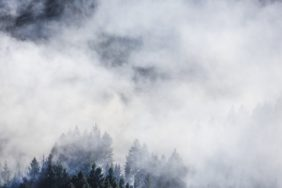 Aerial view of smoke in coniferous forest - Klaus Leidorf Aerial Photography