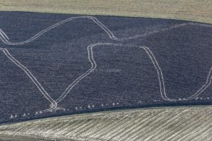 Aerial view of tracks on the ploughed field - Klaus Leidorf Aerial Photography