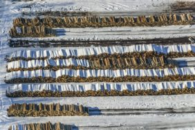 Aerial view of logs waiting for further processing - Klaus Leidorf Aerial Photography