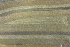 Aerial view of strips in farmland - Klaus Leidorf Aerial Photography
