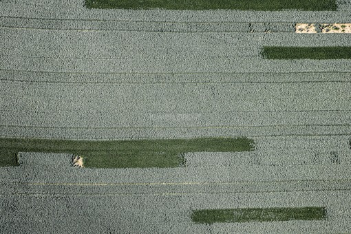 Aerial photograph of stripes in a wheat field - Klaus Leidorf Aerial Photography