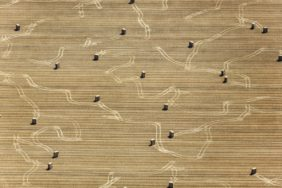 Aerial view of straw bales, ready for transport - Klaus Leidorf Aerial Photography