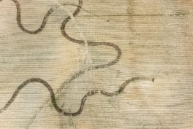 Aerial photograph of the traces of erosion and the farmer in a maize field near Neufahrn-Schaltdorf - Klaus Leidorf Aerial Photography