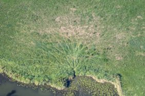 Aerial view of the tracks of the beaver on the banks of the Vils - Klaus Leidorf Aerial Photography