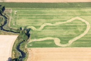 Aerial view of the negative vegetation characteristics of the former course of the Altvils - Klaus Leidorf Aerial Photography