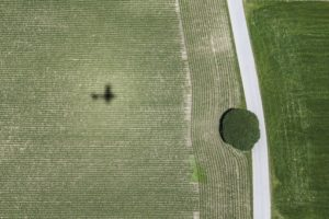 Aerial view of the village lime tree in Dettendorf - Klaus Leidorf Aerial Photography