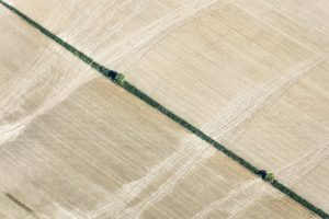 Aerial view of the erosion on the maize field near Hebramsdorf-Neumühle - Klaus Leidorf Aerial Photography