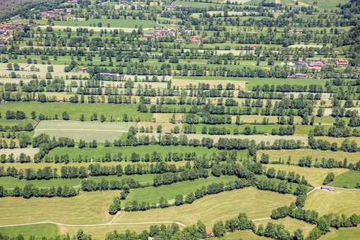Aerial view of the hedge landscape in the Isar valley near Obergries - Klaus Leidorf Aerial Photography