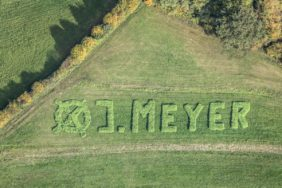 Aerial photograph of the plant-based election advertising for a mayoral candidate - Klaus Leidorf Aerial Photography