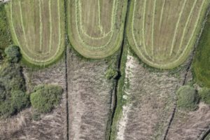 Aerial view of three adjacent meadows that have just been mowed - Klaus Leidorf Aerial Photography