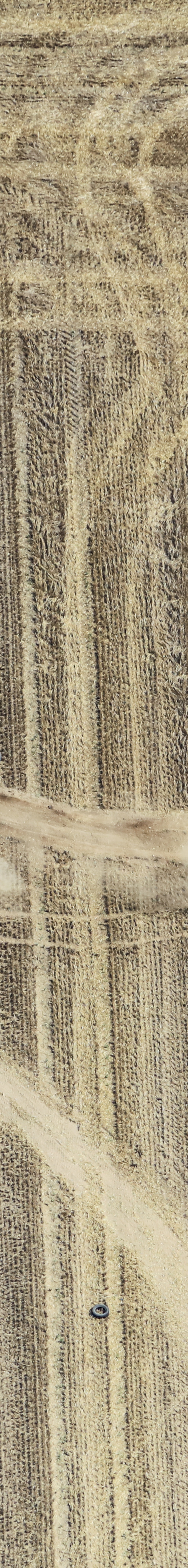 Aerial view of a car race on the stubble field - Klaus Leidorf Aerial Photography