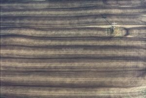 Aerial photograph of a field cross standing on a freshly fertilized field - Klaus Leidorf Aerial Photography