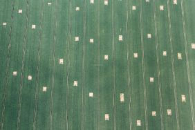 Aerial photograph of a cereal field with gaps for the field larch - Klaus Leidorf Aerial Photography