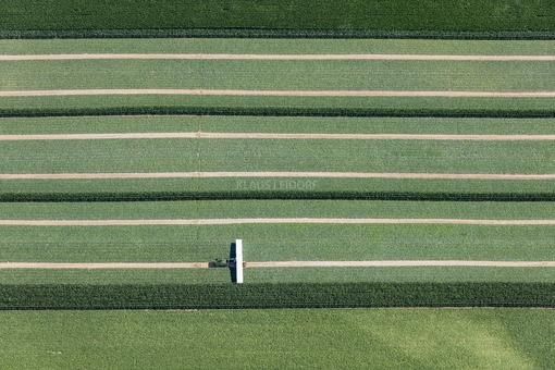 "Aerial view of a cucumber field that is being harvested with the ""Cucumber Flyer - Klaus Leidorf Aerial Photography"