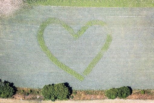 Aerial view of a heart in a field - Klaus Leidorf Aerial Photography
